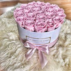 "74 mentions J'aime, 2 commentaires - The Prestige Roses Switzerland (@theprestigerosesswitzerland) sur Instagram : ""Light pink grosse Rosebox ist wirklich sehr sommerlich✨ Treat your girlfriend like a Princess…"""