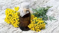 Herb Garden, Magick, Planting Flowers, Insects, Winter Hats, Herbs, Plants, Animals, Fitness
