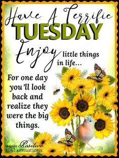 Good morning my beautiful girls. Tuesday Quotes Good Morning, Happy Tuesday Quotes, Cute Good Morning Quotes, Good Morning Prayer, Morning Greetings Quotes, Morning Blessings, Good Morning Messages, Afternoon Quotes, Morning Memes