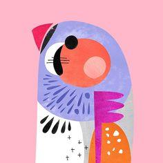 ✨Zebra Finch✨ New Australian bird prints available online today.  I love zebra finches www.petecromer.com  | Instagram