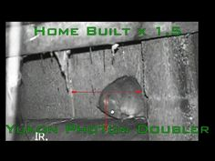 A new infestation (in HD). - YouTube