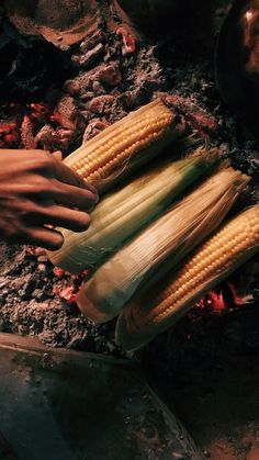 corn in the coals Girl Photography Poses, Tumblr Photography, Food Photography, Creative Instagram Stories, Instagram Story Ideas, Snap Food, Food Snapchat, Foto Casual, Fake Photo