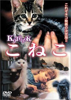 こねこ [DVD], http://www.amazon.co.jp/dp/B00006JLHW/ref=cm_sw_r_pi_awdl_x_8ruVxbN7XJP2C