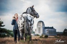 Ready for a ride Sport, Horses, Animals, Animales, Animaux, Horse, Sports, Words, Animal