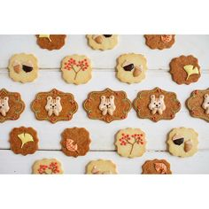 squirrel cookies | fall | autumn | Thanksgiving | acorns | flowers | royal icing