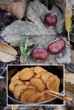 http://la-popote-de-fibie.eklablog.com/biscuits-chataignes-et-noisettes-a127490330