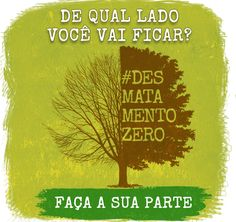 Projeto de lei do Desmatamento Zero é entregue no Congresso   Brasil