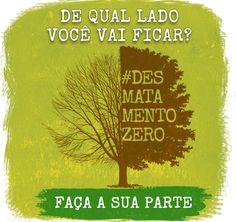 Projeto de lei do Desmatamento Zero é entregue no Congresso | Brasil