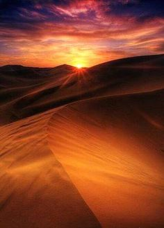The key to surviving in the desert is the need for hydration and avoiding heat exhaustion - www.extremesurvivors.com