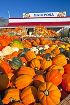 A display of pumpkins and produce at a Keremeos market stall in the Okanagan, British Columbia, Canada. Produce Market, Farmers Market, West Coast Canada, All About Canada, Vancouver City, Pumpkin Squash, Home Economics, Fall Is Here, Beautiful Sites