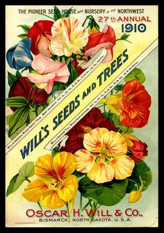 1910 Will's Seed Company annual