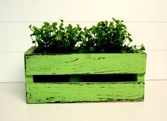 Idea to paint and glaze a wooden crate and turn it into a planter. Love the bright color.