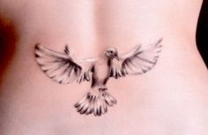 Dove tattoo styles are the foremost well-liked tattoo worn by each men and ladies. Here we present the list of 30 Dove Tattoo Designs For Girls. Best 3d Tattoos, Trendy Tattoos, Tattoos For Women, Tattooed Women, Small Tattoos, Girl Back Tattoos, Tattoo Girls, Peace Tattoos, Body Art Tattoos