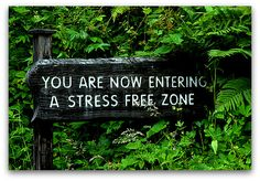 Stress Free Lifestyle . . . being able to enjoy & participate in life, family & work
