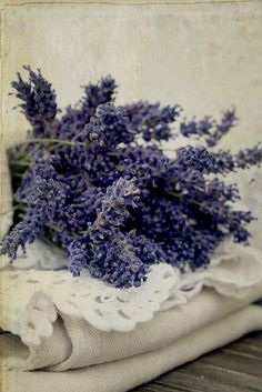 Lavender: When given as a gift, lavender flowers represent purity, silence and luck. Lavender flowers also convey a message of devotion.