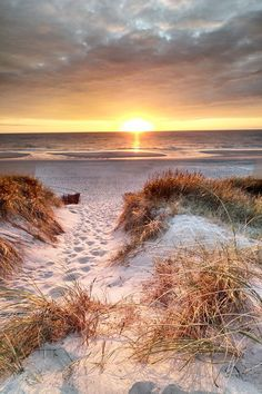 The 7 most beautiful North Sea islands in Germany + tips for your vacation - North Sea Islands – We have selected the most beautiful for you: Sylt, Juist, Norderney, Langeoog - Beautiful Islands, Beautiful Sunset, Beautiful Beaches, Beautiful World, Nature Beach, Ocean Beach, Sunset Beach, Sea Photography, North Sea