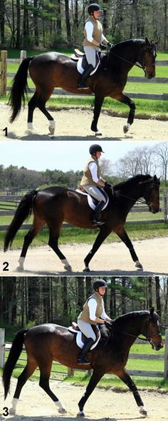 Work Without Stirrups to Strengthen Your Base