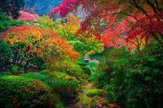 The Japanese Garden in Portland, Oregon