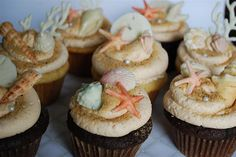 Chocolate Seashell Cupcakes by Twisted Sugar, via Flickr