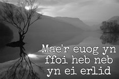 24 beautiful Welsh proverbs and sayings that show the language at its finest - Wales Online Flirting Quotes For Her, Flirting Memes, Quotes For Him, Husband Quotes, Welsh Sayings, Welsh Words, Welsh Language, Language Quotes, Proverbs Quotes