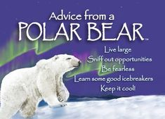 "Each magnet says: Advice from a Polar Bear Live large Sniff out opportunities Be fearless Learn some good icebreakers Keep it cool! Magnet size 2.5"" x 3.5"". Bri"