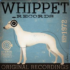 Whippet records original graphic art illustration giclee archival print 12 x 12 x 1.5 signed artist print on Etsy, $43.60 AUD
