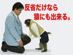 大鵬薬品・チオビタドリンク | 反省だけなら、サルでもできる。