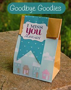 0513-Goodbye-Bag