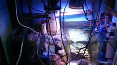 Sump selection, How and why. There are many sumps available in the market and all basically serve the same purpose; to create more oxygen. Aquarium Led, Led Aquarium Lighting, Marine Aquarium, Sump, Fresh Water, The Selection, Purpose, Protein, Lights