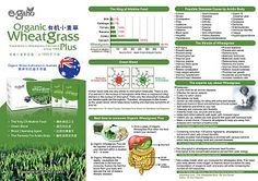 It's time for changing!: 44 points telling you the REASONS why we choose wheatgrass.