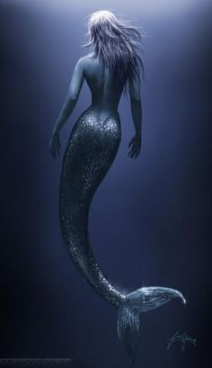 A beautifully shaded dark mermaid with shiny scales and silvery hair.