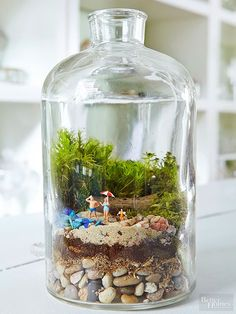 Terrarium Fairy Gardens Apothecary jars are the perfect place to preserve everything from vacation memories to your favorite fairy garden figurines. Get inspired by these clever and creative terrarium fairy gardens that are sure to make you smile. Fairy Terrarium, Succulent Terrarium, Succulents Garden, Terrarium Wedding, Terrarium Closed, Twig Terrariums, Mason Jar Terrarium, Succulent Wreath, Indoor Fairy Gardens