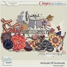 Attitude Of Gratitude : Element Pack 1 by Pixelily Designs
