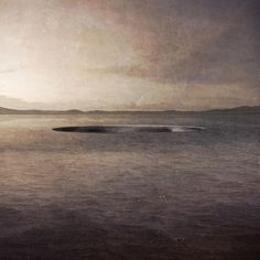 Davide Macchi . THE VOID IN WATER . Porto Pino  (1)
