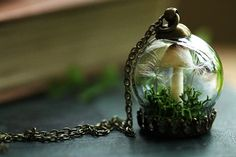 Hey, I found this really awesome Etsy listing at https://www.etsy.com/listing/476661846/tiny-mushroom-terrarium-necklace-nature