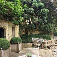 Hotel The Old Parsonage en Oxford. Vía Pinterest. . . #boxwood #hedges #topiary #greenplants #paisajismo #gardens #jardines #terrazas #terrace #oxford #interiorismo #decorgram #englishcountry #houseandgarden #theoldparsonage #casaconencanto
