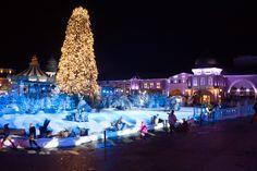 Wintertraum im Phantasialand  Ein Erlebnissbericht  http://bonnentdecken.de/wintertraum-im-phantasialand-gewinnspiel/
