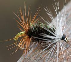 Renegade   Renegade dry fly, an Idaho classic   John Ruberto   Flickr
