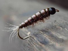 Сased caddis (Brown) N-156 Fly Tying, Fly Fishing, Bead, Adventure, Patterns, Brown, Nymph, Block Prints, Beads