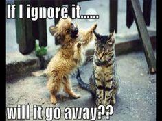Annoying friend