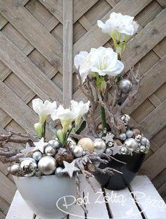 Die 48 Besten Bilder Von Amaryllis Floral Arrangements Christmas