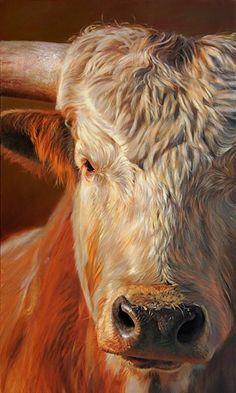 Gado Vaca boi - Teresa Elliott Artist - gallery-one Hyperrealistic Art, Photo Animaliere, Cow Pictures, Cow Painting, Cow Art, Mundo Animal, Artist Gallery, Wildlife Art, Western Art