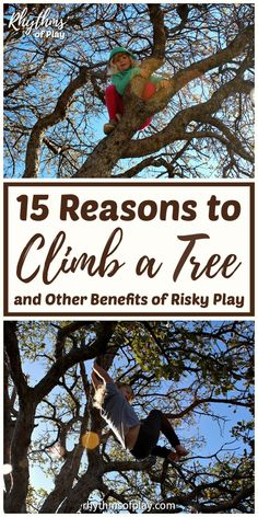 15 Reasons to Climb a Tree and other Benefits of Risky Play Nature Activities, Learning Activities, Kids Learning, Outdoor Games For Toddlers, Summer Activities For Kids, Outdoor Learning, Outdoor Education, All Nature, Backyard For Kids