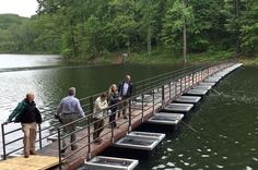 Hikers who visit the Ragged Mountain Natural Area now have a unique way to cross the reservoir — a floating bridge, the first of its kind in Virginia.