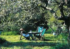 Granchester Orchard Tea Garden. I'll be with you in apple blossom time...