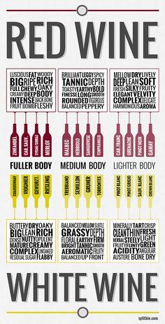 Wine 101 Infographic