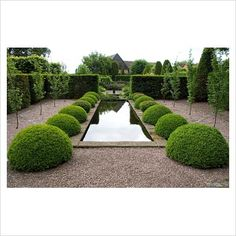 Topiary in the Rill Garden at Wollerton Old Hall, Shropshire. Photo by Jonathan Garden Landscape Design, Landscape Architecture, Garden Landscaping, Formal Gardens, Outdoor Gardens, Modern Gardens, Japanese Gardens, Small Gardens, Water Garden