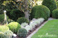ogrody danusi - Szukaj w Google