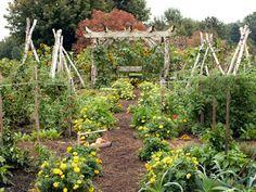 Small Vegetable Garden Design Ideas - How to Plan a Garden - Country Living