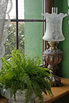 I'd love to own such a lamp one day. One that works and can be used. Potted ferns in a white pot looks clean and good! Antique Oil Lamps, Antique Lighting, Vintage Lamps, Victorian Lighting, Woodlands Cottage, Lampe Decoration, Vibeke Design, English Country Cottages, Irish Cottage